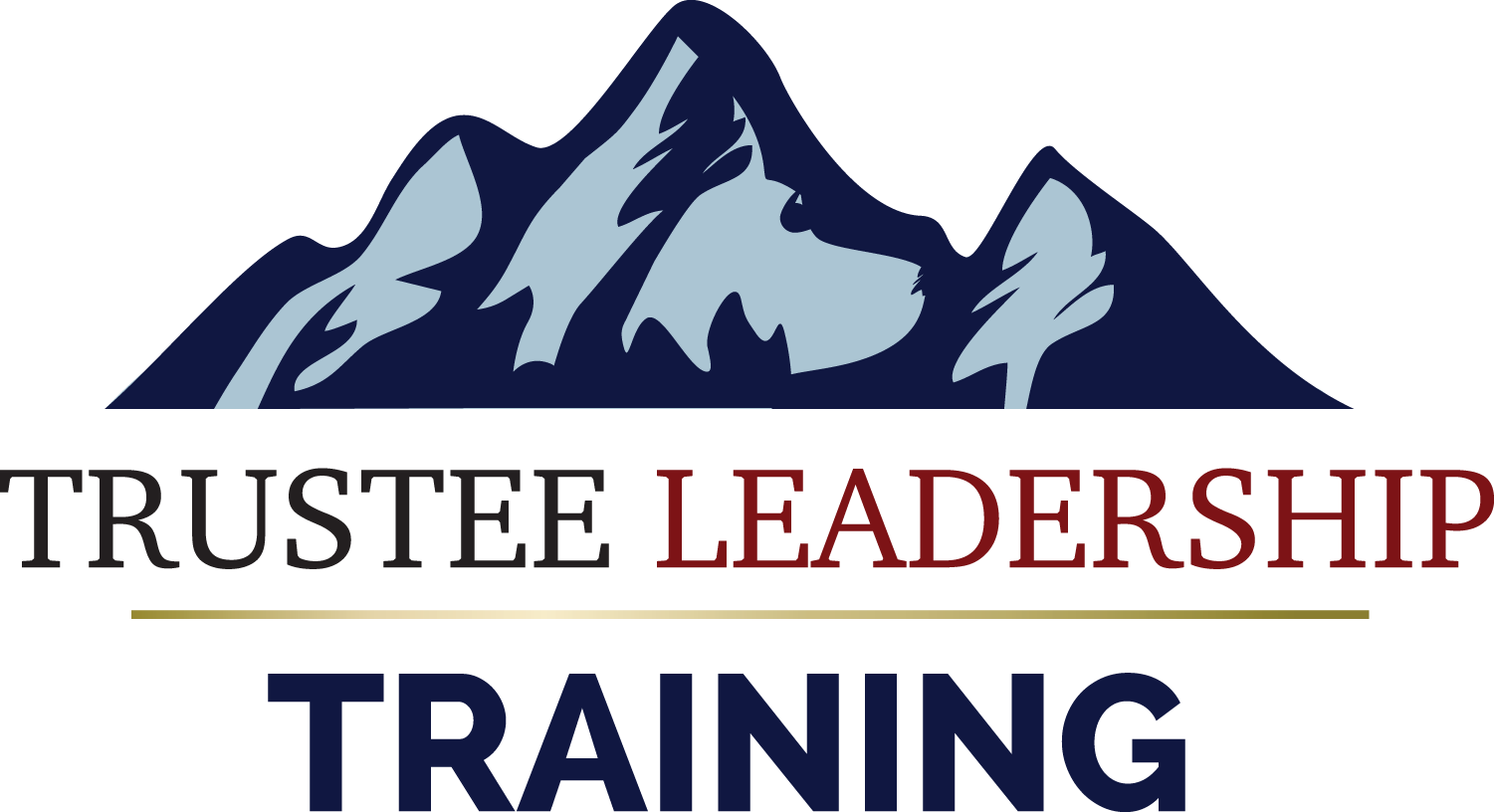Trustee Leadership Training